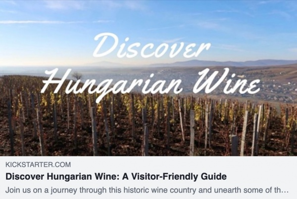 Discover Hungarian Wine: A Visitor-Friendly Guide